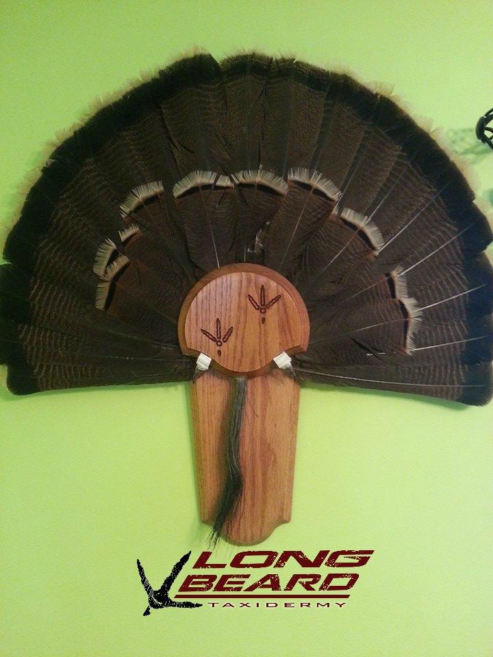 turkey-fan-mount-2