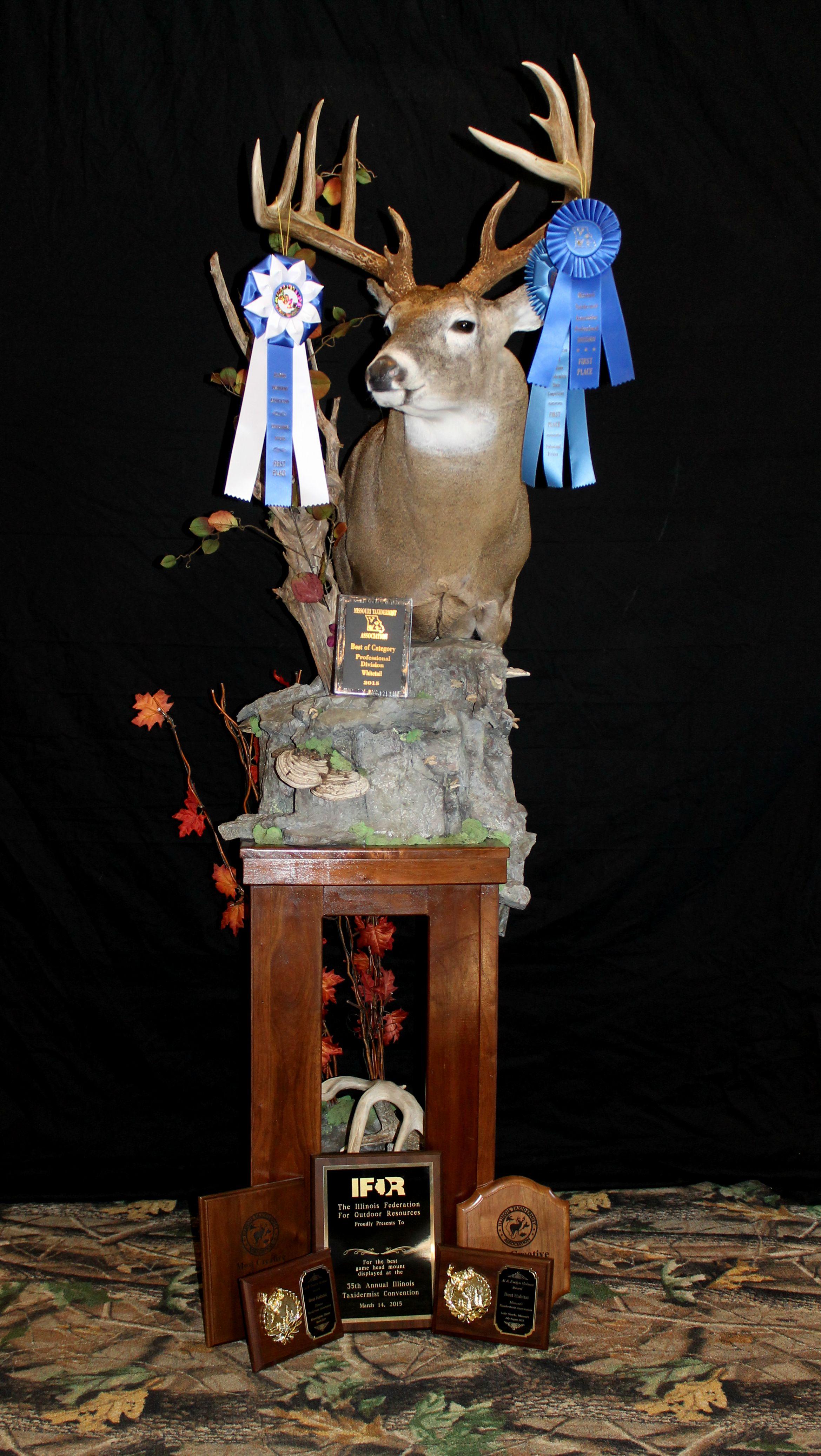 deer 2015