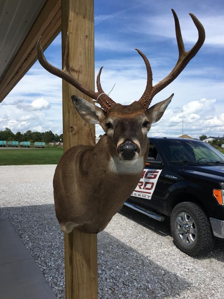 deer-4-2018
