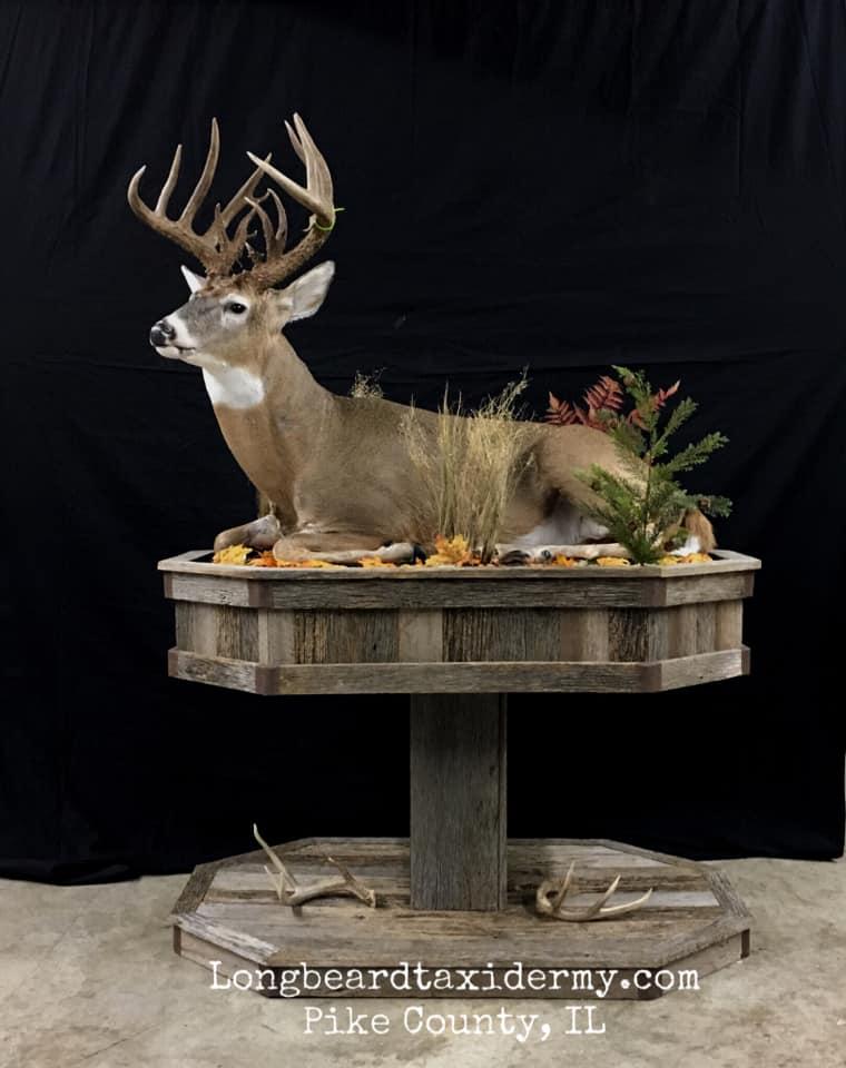 lifesize-214-inch-deer-2018